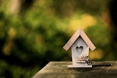 House for sale.... (eleni m (busy remodeling house and garden)) Tags: birdhouse vogelhuisje outdoor dof bokeh feather heart sun shadow song lucifer tabletop wooden canoneos6d f28