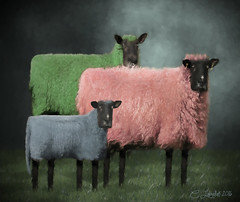 Sheep Family Portrait (clabudak) Tags: family animals sheep mother father boy portrait photo colorful pastel easter