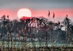 Ant marsh sunset (tina negus) Tags: ant marsh sunset river norfolk landscape