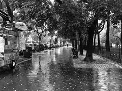 NY (Tarcicio Luna Chávez) Tags: w77thst eeuu calle blanco y negro bw byn centralparkwest