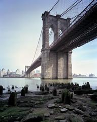 Brooklyn Bridge (devb.) Tags: 4x5 largeformat portra160 chamonix45n2 75mm nyc brooklynbridge eastriver