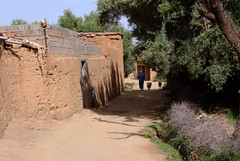 DSCF5882 (domenicomusumeci1) Tags: marocco ourika