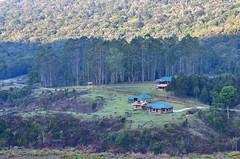 Pampadum shola National Park. Kerala,India. (Prashob adithiruthy) Tags: pampadumsholanationalpark vattavada munnar westernghats nikon70300 nikond5100 ngc nikonindia keralatourism kerala nikon pampadumshola