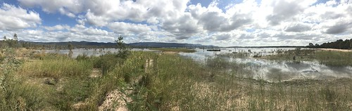Lake Fyans panorama
