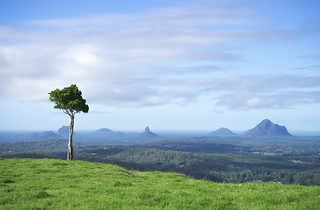 One Tree Hill, Queensland Australia