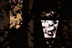 The door (https://www.facebook.com/ArrrrtDesignPhotography) Tags: amsterdam night still life nieuwe prinsengracht