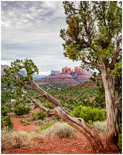Cathedral Rock by Steve Ornberg -  Award Class A Print - March 2017