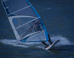A windsurfer in action in Hittarp (frankmh) Tags: windsurfer windsurfing hittarp skåne sweden öresund outdoor