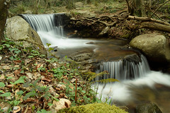 Riera de Riells (Hachimaki123) Tags: paisaje landscape montseny parcnaturaldelmontseny río rio river riera rieraderiells cascada water waterfall agua