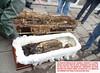 Miguel Iglesias (historicalbodies) Tags: presidente male southamerica skeleton soldier army skull general military president casket bones bone corpse coffin exhumed 1900s exhumation exhume