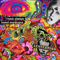 Twiggy Trip (psychogaragecollage) Tags: eye collage colagem trippy psychedelic marijuana twiggy