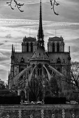 Notre Dame Cathedral (Kate Watson Instagram: @katwatson8) Tags: blackandwhite bw paris france church architecture europe places demolition notredame catherdral isle iledelecite d80 nikond80 otherkeywords