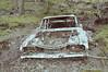Joy Ride II (Fancy E) Tags: penningtonnj abandonedcar overgorwn
