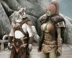 Dragonborn group - The partner 3 (Fgem) Tags: imperial orc nord breton khajiit skyrim orsimer