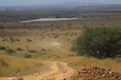 ATHI DAM, NAIROBI GAME PARK, KENYA 2014 (nordique72) Tags: animals landscape kenya nairobi lion zebra giraffe baboon wildebeast eland waterbuffalo warthog gamepark whiterhinoceros egyptiangoose osterich masaigiraffe ngonghills acaciatree thompsonsgazelle velvetmonkey crownbird animalsofkenya hardebeast maracoustork