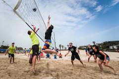 2014 Jeju Furey Volleyball Tournam