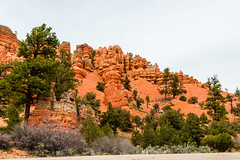 Red Canyon on Utah Highway 12, Utah (MikePScott) Tags: road street camera trees plants usa lens utah highway rocks boulevard unitedstates motorway canyon cliffs freeway strata hoodoo avenue redcanyon topography fairychimney builtenvironment panguitch tentrock earthpyramid dixieforest nikond800 nikon28300mmf3556 featureslandmarks