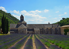 Zisterzienser-Abtei Sénanque - Provence (karinrogmann) Tags: frankreich lavender provence lavanda lavendel sénanque cistercianabbey zisterzienserabtei abbaziacistercense