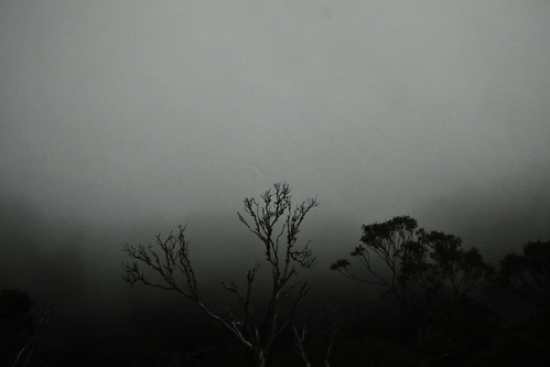 Misty afternoon, Central Highlands