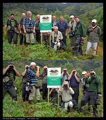 Birdwatchrs in Stresemann's Bristlefront - Bandeira - Minas Gerais