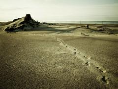 (NilsPix) Tags: beach sand dunes footprints