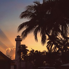 Vanina Walsh photos from stacker (2) (vaninacollection) Tags: fashion hawaii waikiki cheeky brazilian swimwear walsh vanina