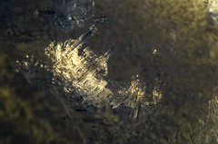 Art and Ice 2 (Sulev Lange) Tags: art ice dark space dramatic contrast macro closeup homeworld frozen crystals