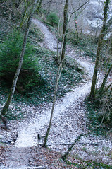 20170107_Gorge_du_Fier (1 sur 14) (calace74) Tags: fier gorgedufier lovagny rhonealpes france gel hiver neige paysage rivière