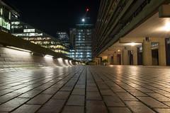 19/365 - Gorillapod (Spannarama) Tags: 365 january lowviewpoint ratseyeview highwalk vanishingpoint brutalist concrete architecture lights lowlight dark evening night barbican london uk