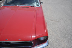 """1967 Ford Mustang Convertible • <a style=""""font-size:0.8em;"""" href=""""http://www.flickr.com/photos/85572005@N00/32780123563/"""" target=""""_blank"""">View on Flickr</a>"""
