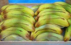Trapani, Via Serisso, Pasticceria Cinzia, Marizpan-Bananen (HEN-Magonza) Tags: trapani sizilien sicily sicilia italien italy italia fruttamartorana viaserisso pasticceriacinzia marzipanfrüchte marzipanfruit banane banana