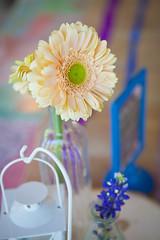 IMG_1722.jpg (tiffotography) Tags: austin casariodecolores texas tiffanycampbellphotography weddingphotogrpahy