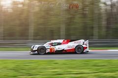 D16V0160 (Twin Camera) Tags: wec wecprologue motorsportphotography motorsport h24lemans autodromomonza fiawec