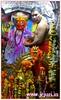RP 9 a (Upadhye Guruji. Jejuri.) Tags: jejuri khandoba kadepathar malhar mhalsakant martand bhairav mallanna mallappa mailarling shankar mahdev mhalsa ghode uddan steps karha karhepathar purandar valley talav sadanand yelkot mandir temple jejurgad upadhye guruji mangsooli mangsuli devargudda guddapur dharwad komaruvelli bidar manikprabhu satare korthan dhamani aadi mailar dawadi nimgaon jaymalhar delawadi shegud naldurga rangpanchami colours color