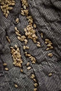 Apr17 Macro Monday, Seeds