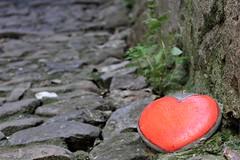 L'amore per le strade (Bi_photo) Tags: italia sanremo italy street borgo bussana nature
