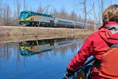 Paddler Meet Train... (deanspic) Tags: richmond richmondfen fen canoe canoeing paddle paddling photopaddle vfmc viarail train rail water marsh g3x cn cnrail viatrain via canada sesquicentennial