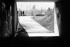 (nicohoelke) Tags: lichtundschatten blackwhite tunnel