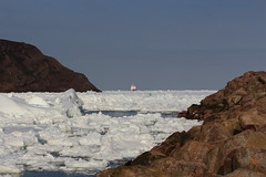 IMG_7022_The Narrows blocked with ice (daveg1717) Tags: thenarrows ice stjohns