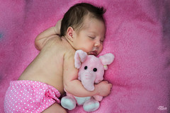 _DSC0052 (Jonas Kakaroto Honorato) Tags: jkakaroto newborn recemnascido baby bebe luna criança child