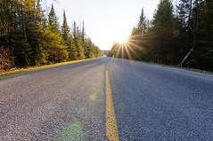 _DSC3086 (phatwhistle) Tags: road michigan leelanau northport trees sunset nikon nikond5000 tokina wideangle northernmichigan