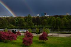 KNA_2605 (koorosh.nozad) Tags: berlin potsdamerplatz germany deutschland park centralpark tiergarten skyline bäume baum tree trees city downtown rainbow regenbogen