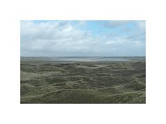 Wet fields. Husby Klit, Denmark (March 2017) (csinnbeck) Tags: sigma dp2m merrill dp2 2017
