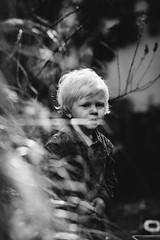 Mick (Pim Geerts) Tags: mick canon eos 5dm3 carl zeiss planar 1485 85mm fixed focus prime portret portrait child kid boy blond tuin garden bokeh bokehlicious manualfocusisforsuperheroes autofocusisfordummies black white zwartwit planart1450