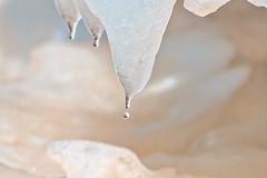 Drip, Drip, Drip (CdnAvSpotter) Tags: rideau falls ottawa river waterfall water winter ice drops canada explorecanada