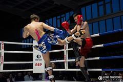 """adam zyworonek fotografia lubuskie zagan zielona gora • <a style=""""font-size:0.8em;"""" href=""""http://www.flickr.com/photos/146179823@N02/33695449855/"""" target=""""_blank"""">View on Flickr</a>"""