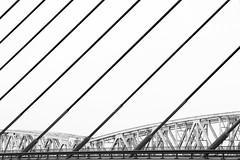 Zaltbommel (dirkjandb) Tags: rijkswaterstaat a2 brug bridge minimal prorail martinusnijhoffbrug nederland gelderland zaltbommel