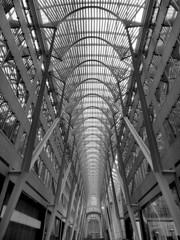 Allen Lambert Galleria, Toronto, Ontario (duaneschermerhorn) Tags: toronto ontario canadaarchitecture building skyscraper structure highrise architect modern contemporary modernarchitecture contemporaryarchitecture black white blackandwhite blackwhite