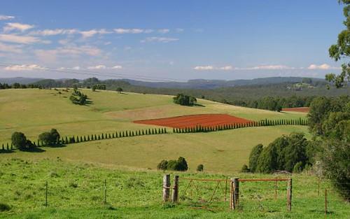Royalla, Robertson NSW 2577