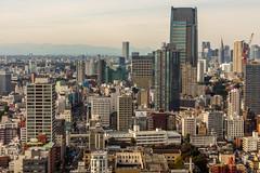 IMG_2661 (Evgeny Gorodetskiy) Tags: birdseye autumn city overlook skyscrapper tokyo japan travel minatoku tōkyōto япония jp